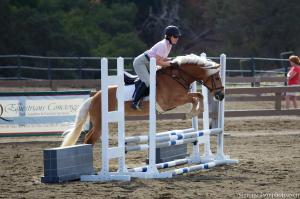 Ellie jumping in her Ansur Elite treeless saddle