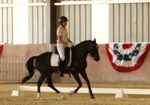 Finn showing 3rd level dressage