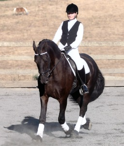 Zorro and I in a Quadrille about 10 years ago. Although we're in a circle here, you can see that tight left hip is causing me to lean too much to the left. Phooey.