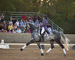 Animo tail coat - gorgeous on that grey horse, don't you think?